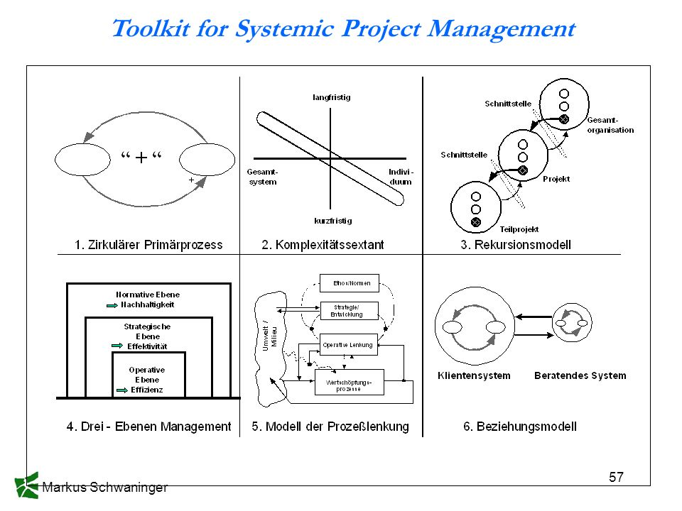 Markus Schwaninger 57 Toolkit for Systemic Project Management