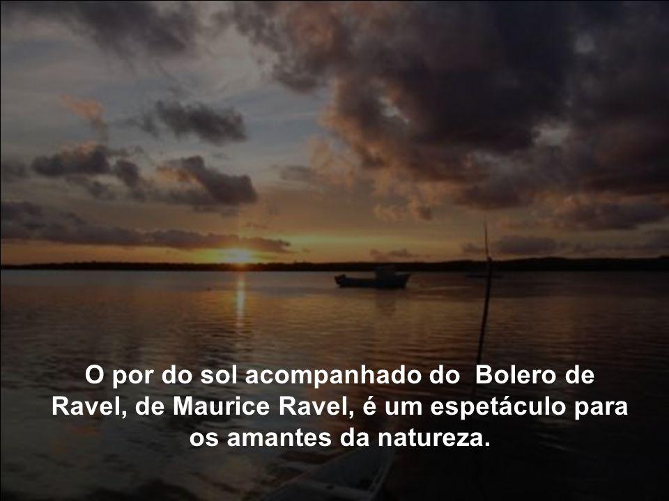 Edição Inês Vieira.inesdedes@hotmail.com Texto: Inês Vieira.