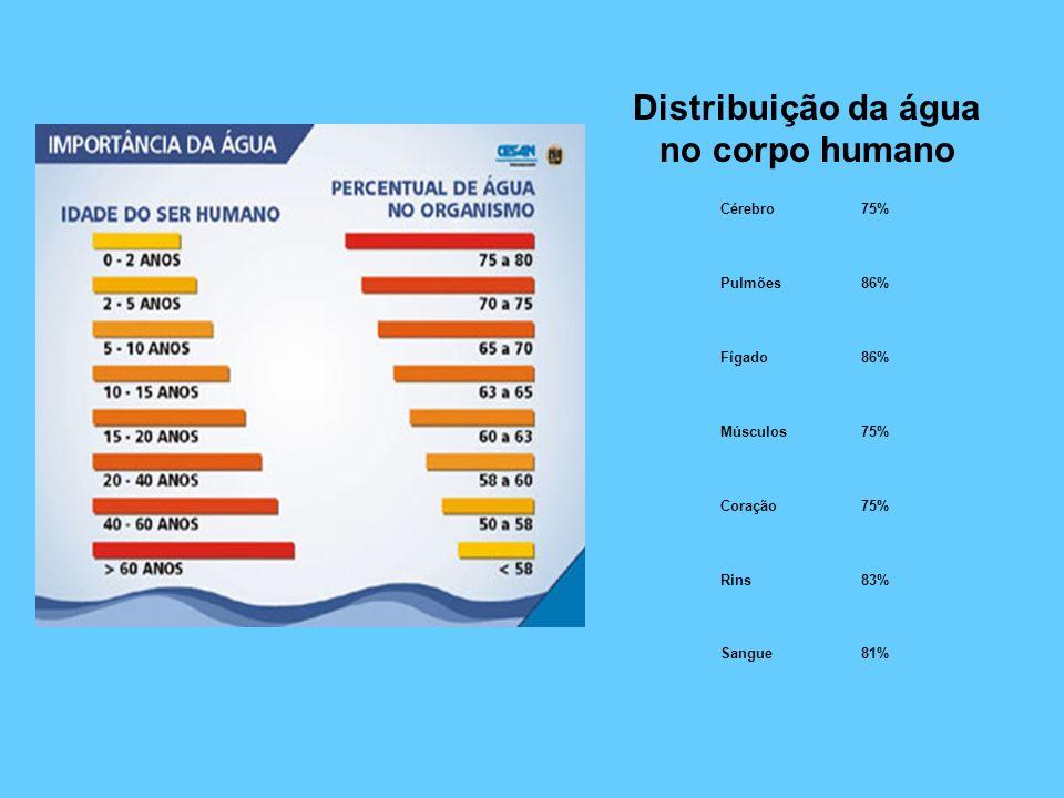 Distribuição da água no corpo humano Cérebro75% Pulmões86% Fígado86% Músculos75% Coração75% Rins83% Sangue81%