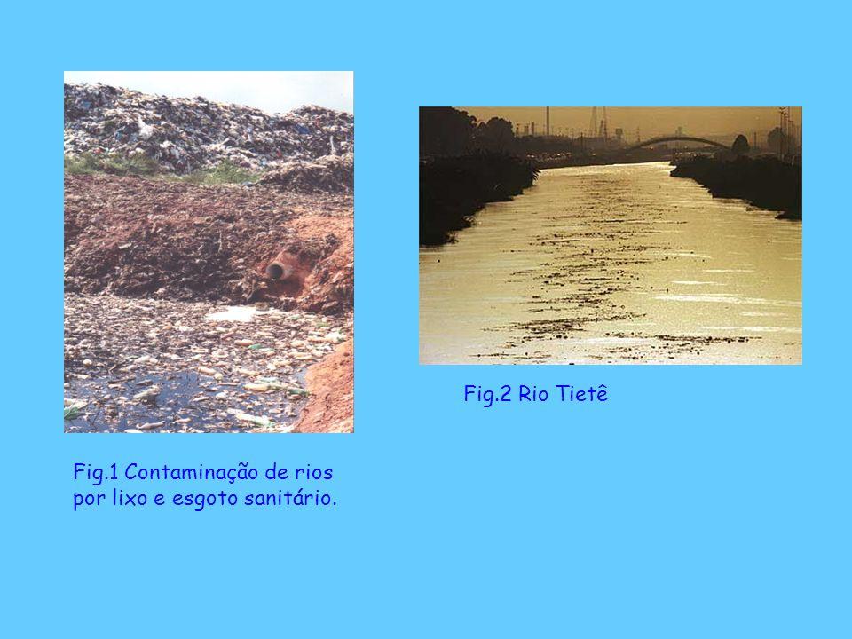 Fig.1 Contaminação de rios por lixo e esgoto sanitário. Fig.2 Rio Tietê
