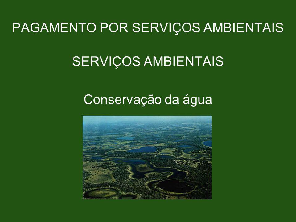PAGAMENTO POR SERVIÇOS AMBIENTAIS SERVIÇOS AMBIENTAIS Conservação da água