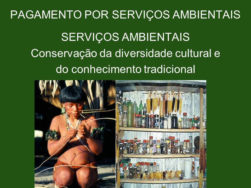 PAGAMENTO POR SERVIÇOS AMBIENTAIS SERVIÇOS AMBIENTAIS Conservação da diversidade cultural e do conhecimento tradicional