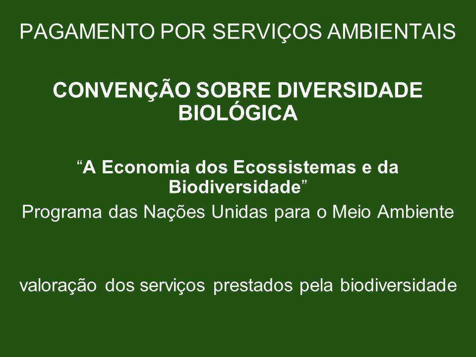 PAGAMENTO POR SERVIÇOS AMBIENTAIS CONVENÇÃO SOBRE DIVERSIDADE BIOLÓGICA A Economia dos Ecossistemas e da Biodiversidade Programa das Nações Unidas par
