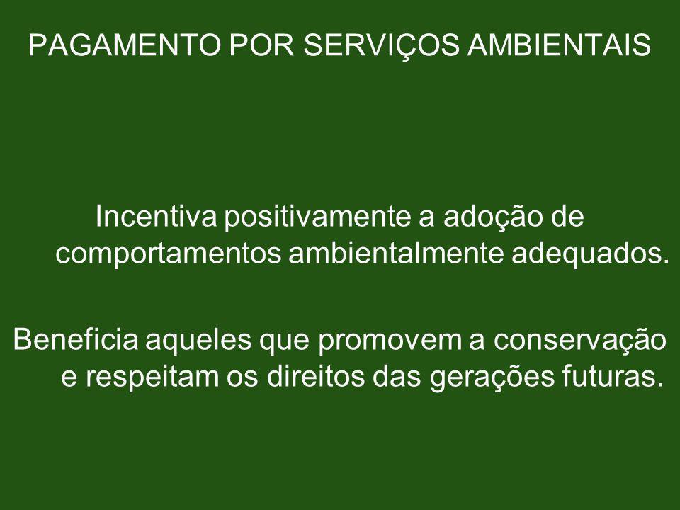 PAGAMENTO POR SERVIÇOS AMBIENTAIS Incentiva positivamente a adoção de comportamentos ambientalmente adequados. Beneficia aqueles que promovem a conser