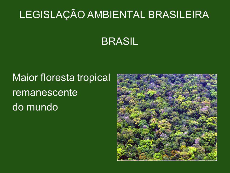 LEGISLAÇÃO AMBIENTAL BRASILEIRA BRASIL Maior floresta tropical remanescente do mundo