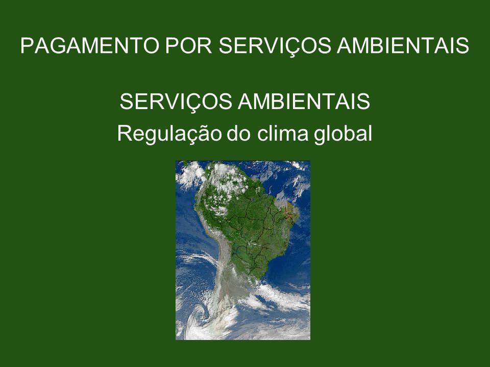 PAGAMENTO POR SERVIÇOS AMBIENTAIS SERVIÇOS AMBIENTAIS Regulação do clima global