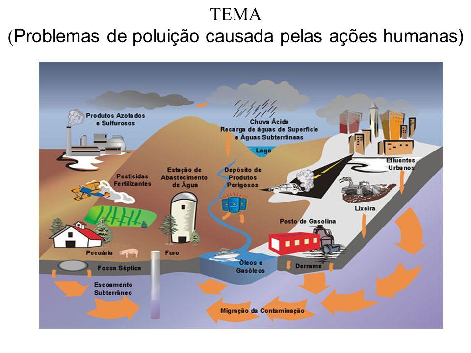 TEMA ( Problemas de poluição causada pelas ações humanas)