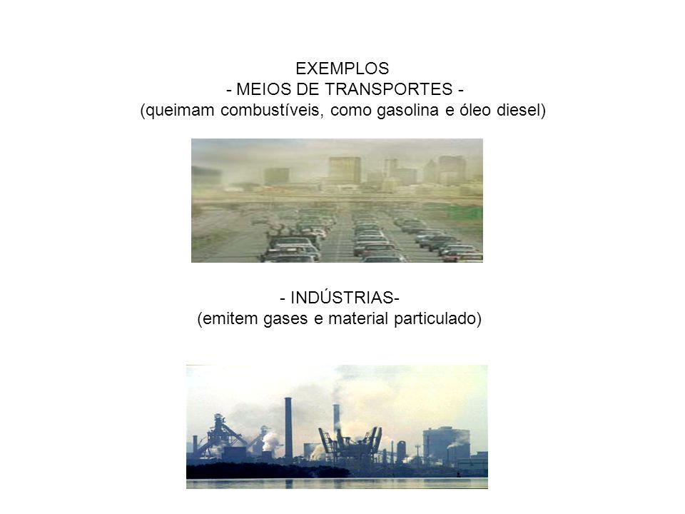 EXEMPLOS - MEIOS DE TRANSPORTES - (queimam combustíveis, como gasolina e óleo diesel) - INDÚSTRIAS- (emitem gases e material particulado)