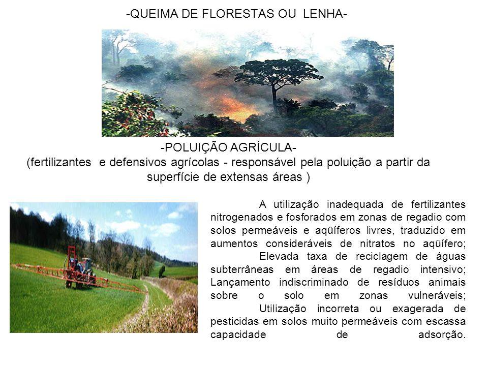 -QUEIMA DE FLORESTAS OU LENHA- -POLUIÇÃO AGRÍCULA- (fertilizantes e defensivos agrícolas - responsável pela poluição a partir da superfície de extensa