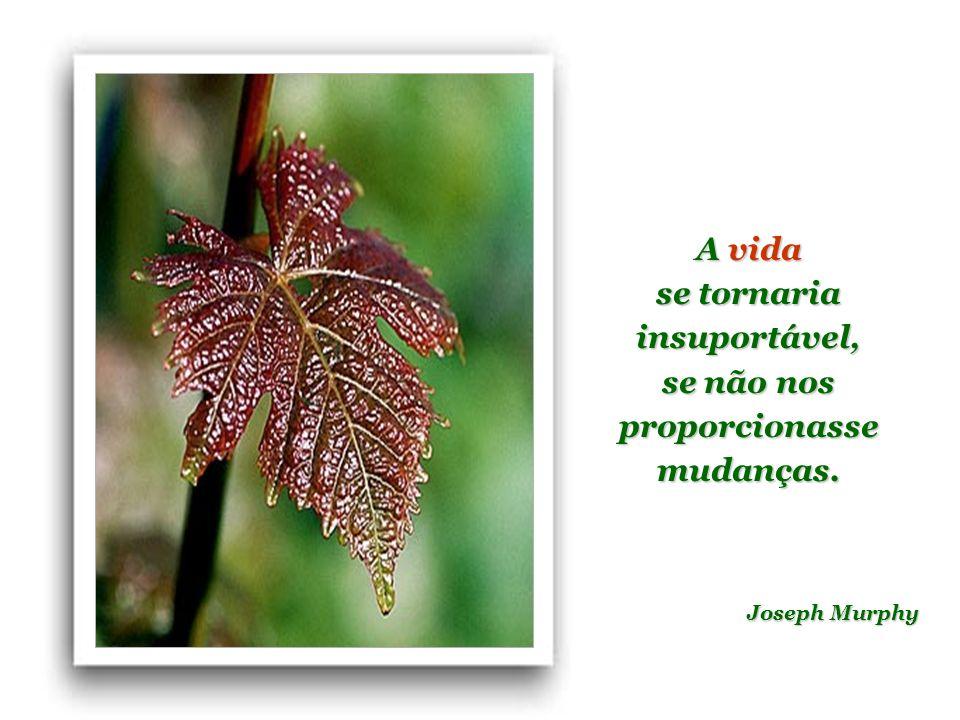 As coisas mais importantes na vida não são coisas. Anthony J. D'Angelo