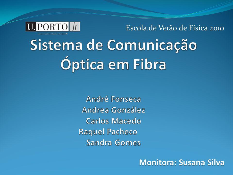 Escola de Verão de Física 2010 Monitora: Susana Silva