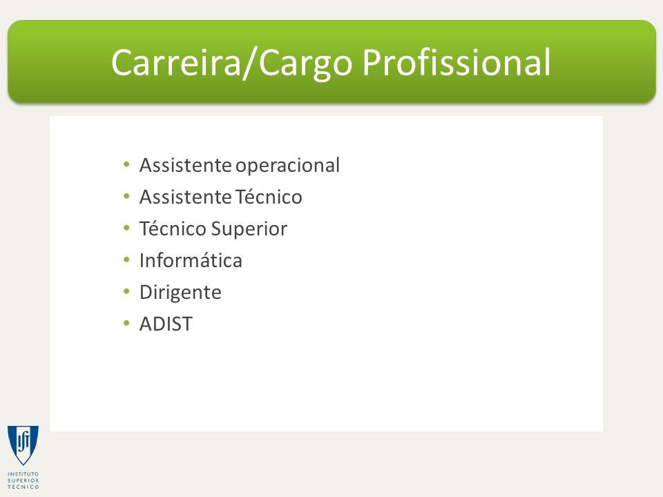 Assistente operacional Assistente Técnico Técnico Superior Informática Dirigente ADIST Carreira/Cargo Profissional