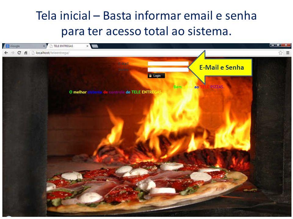 Tela inicial – Basta informar email e senha para ter acesso total ao sistema. E-Mail e Senha