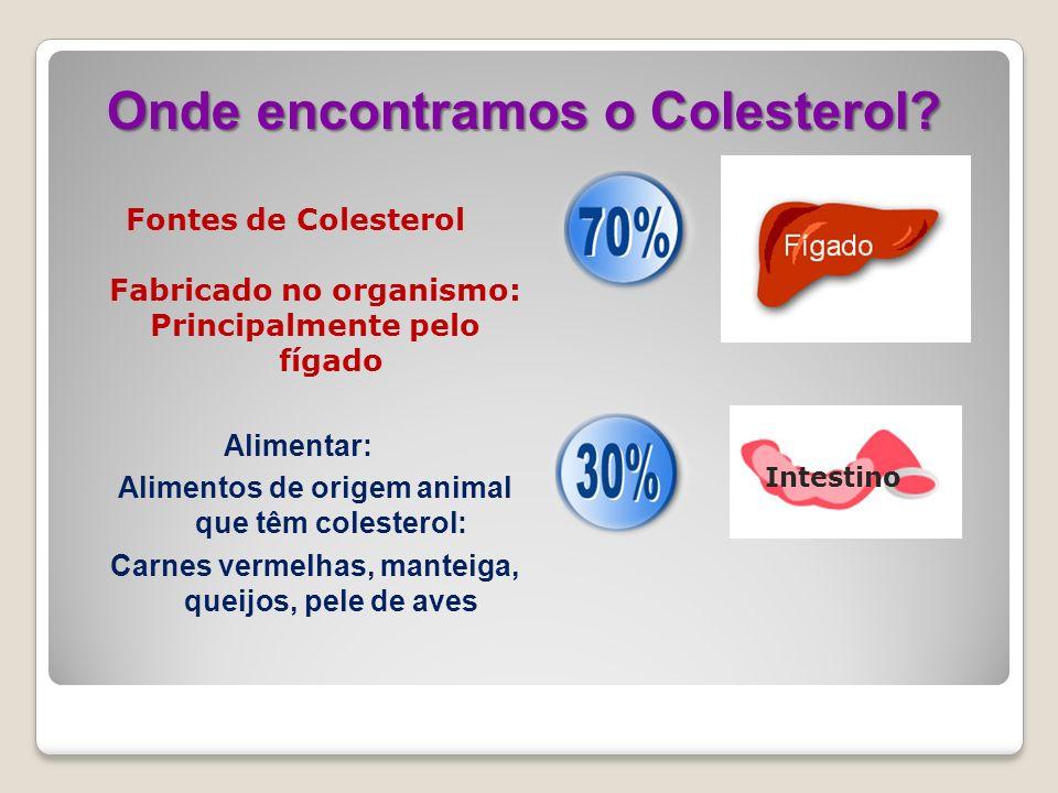 Onde encontramos o Colesterol? Fontes de Colesterol Fabricado no organismo: Principalmente pelo fígado Intestino Alimentar: Alimentos de origem animal