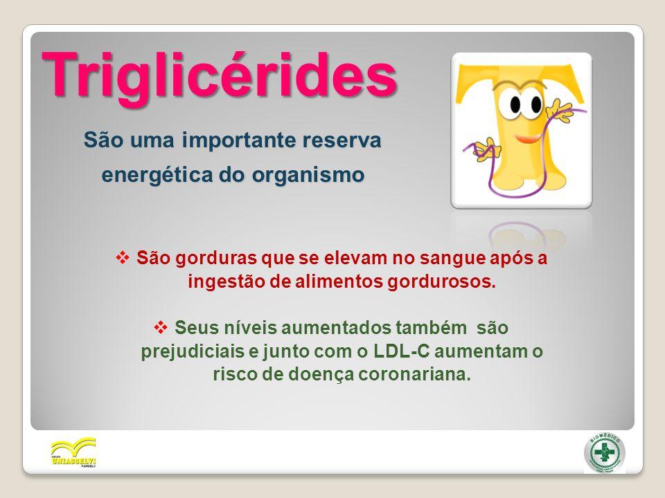 Triglicérides São uma importante reserva energética do organismo São gorduras que se elevam no sangue após a ingestão de alimentos gordurosos. Seus ní