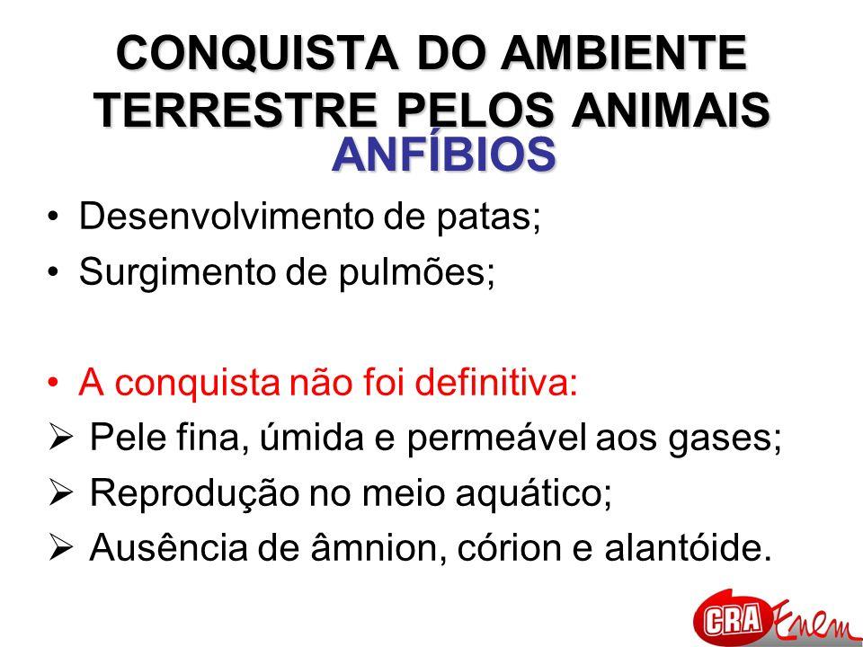 CONQUISTA DO AMBIENTE TERRESTRE PELOS ANIMAIS RÉPTEIS TETRÁPODES; AMNIOTAS, ALANTOIDIANOS; PELE SECA (sem glândulas) e RICA EM QUERATINA; FECUNDAÇÃO INTERNA; OVO COM CASCA CALCÁREA; RESPIRAÇÃO PULMONAR; EXCREÇÃO DE ÁCIDO ÚRICO;