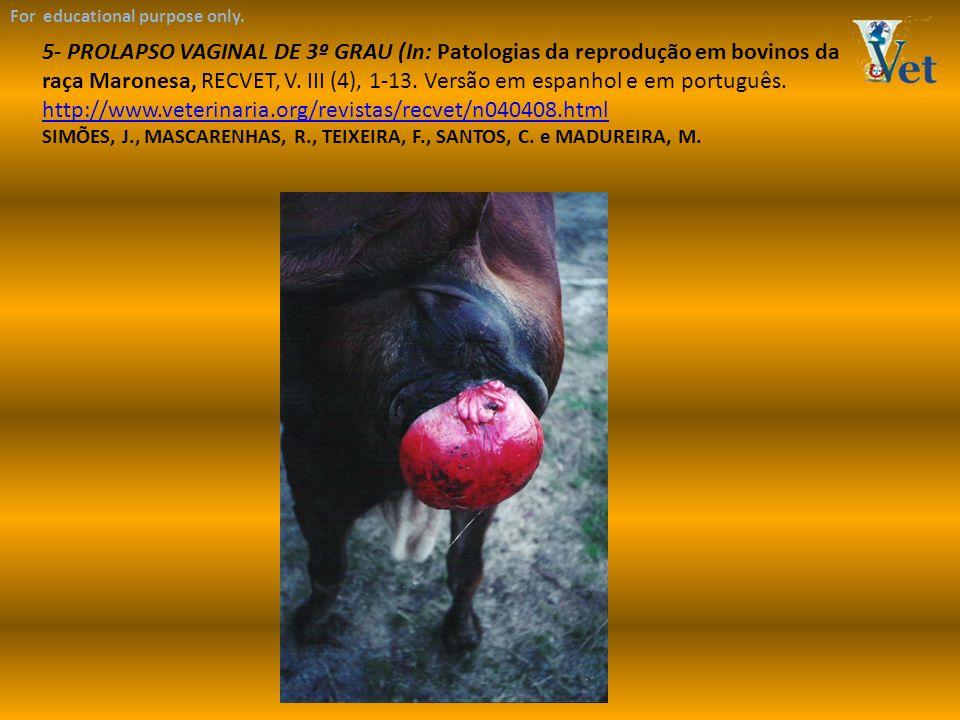 For educational purpose only. 5- PROLAPSO VAGINAL DE 3º GRAU (In: Patologias da reprodução em bovinos da raça Maronesa, RECVET, V. III (4), 1-13. Vers