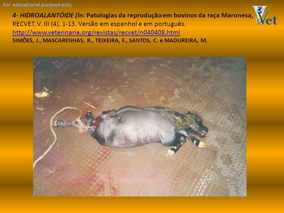 For educational purpose only. 4- HIDROALANTÓIDE (In: Patologias da reprodução em bovinos da raça Maronesa, RECVET, V. III (4), 1-13. Versão em espanho