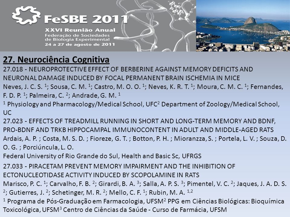 27. Neurociência Cognitiva 27.018 - NEUROPROTECTIVE EFFECT OF BERBERINE AGAINST MEMORY DEFICITS AND NEURONAL DAMAGE INDUCED BY FOCAL PERMANENT BRAIN I