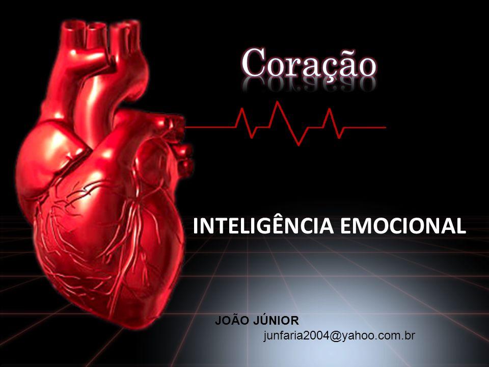 INTELIGÊNCIA EMOCIONAL JOÃO JÚNIOR junfaria2004@yahoo.com.br