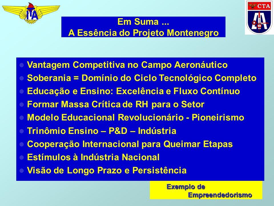 Em Suma... A Essência do Projeto Montenegro Vantagem Competitiva no Campo Aeronáutico Soberania = Domínio do Ciclo Tecnológico Completo Educação e Ens