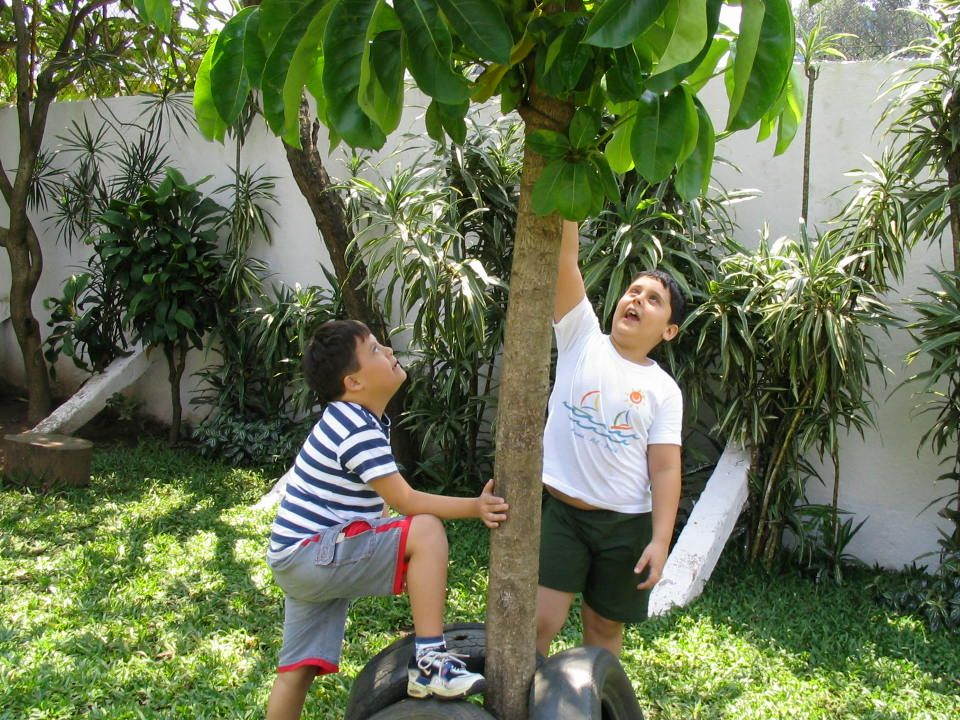 Eu queria uma escola que lhes ensinasse tudo sobre a natureza, o ar, a matéria, as plantas, os animais, seu próprio corpo.