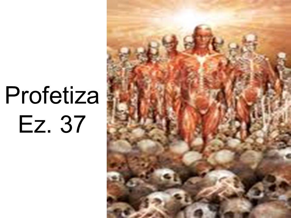 Profetiza Ez. 37