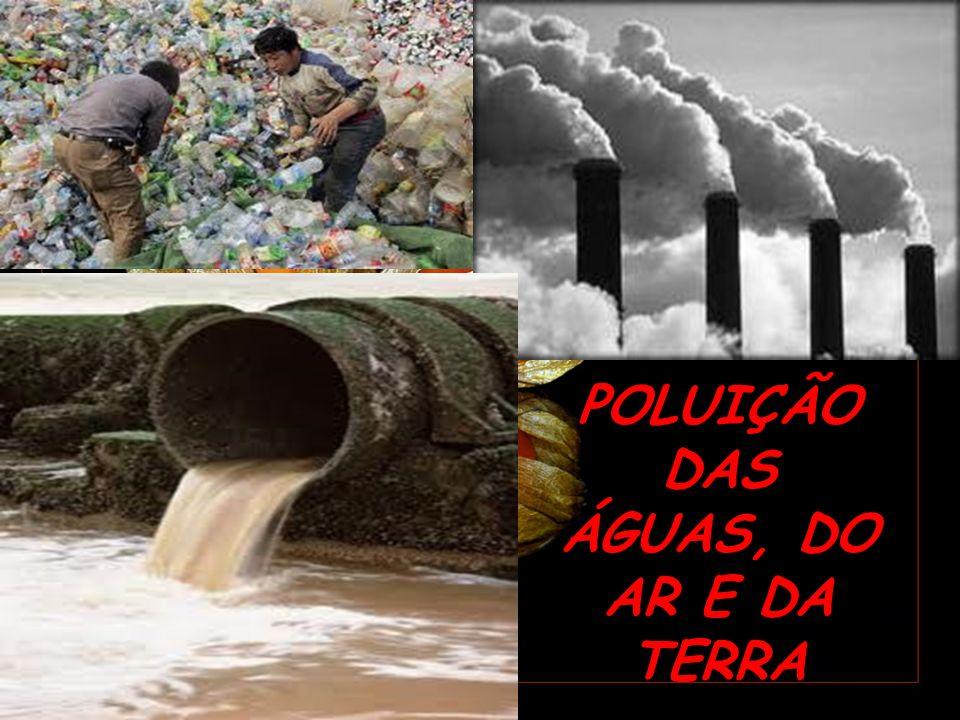 POLUIÇÃO DAS ÁGUAS, DO AR E DA TERRA