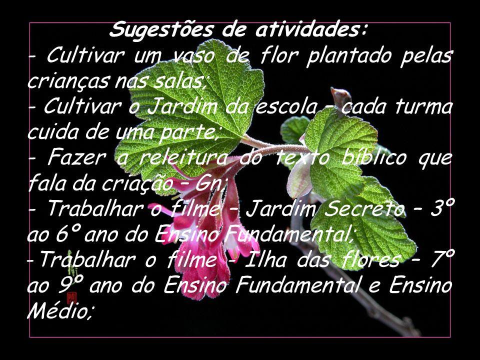 Sugestões de atividades: - Cultivar um vaso de flor plantado pelas crianças nas salas; - Cultivar o Jardim da escola – cada turma cuida de uma parte;