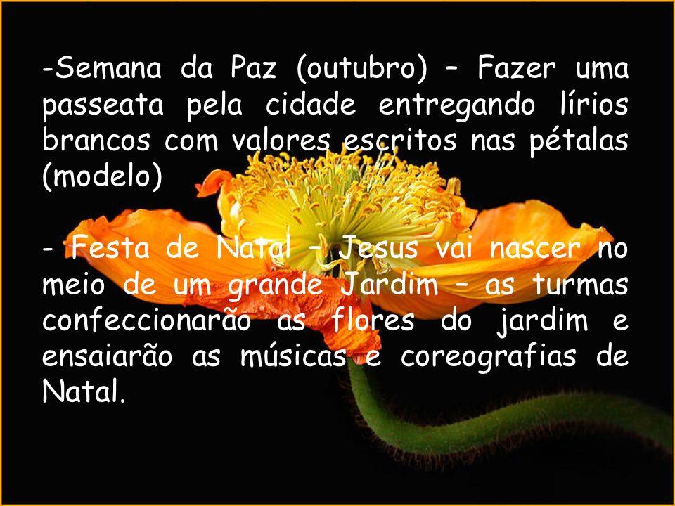 -Semana da Paz (outubro) – Fazer uma passeata pela cidade entregando lírios brancos com valores escritos nas pétalas (modelo) - Festa de Natal – Jesus