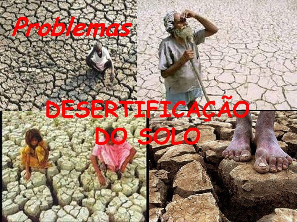Problemas DESERTIFICAÇÃO DO SOLO