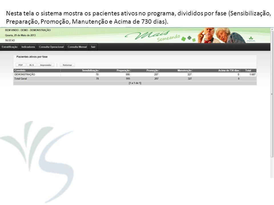 Nesta tela o sistema mostra os pacientes ativos no programa, divididos por fase (Sensibilização, Preparação, Promoção, Manutenção e Acima de 730 dias)