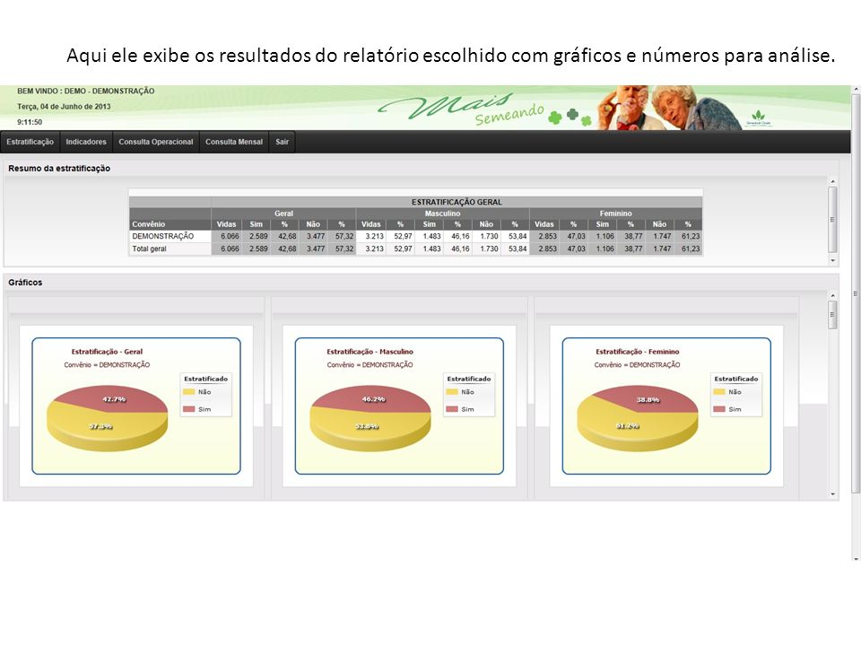 Aqui ele exibe os resultados do relatório escolhido com gráficos e números para análise.