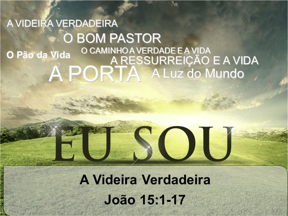 A Videira Verdadeira João 15:1-17 O Pão da Vida A Luz do Mundo A PORTA A RESSURREIÇÃO E A VIDA O BOM PASTOR O CAMINHO A VERDADE E A VIDA A VIDEIRA VER