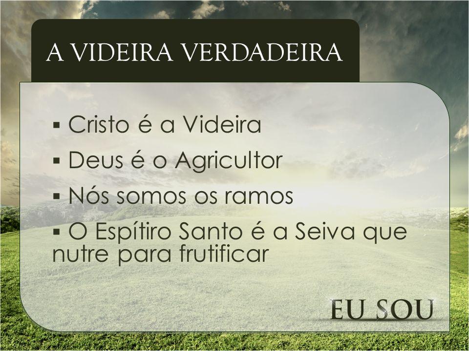 Cristo é a Videira Deus é o Agricultor Nós somos os ramos O Espítiro Santo é a Seiva que nutre para frutificar A VIDEIRA VERDADEIRA