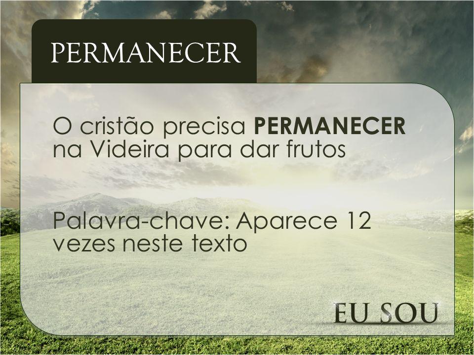 O cristão precisa PERMANECER na Videira para dar frutos Palavra-chave: Aparece 12 vezes neste texto PERMANECER