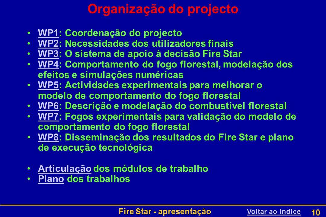 Fire Star - apresentação 10 Organização do projecto WP1: Coordenação do projectoWP1 WP2: Necessidades dos utilizadores finaisWP2 WP3: O sistema de apo
