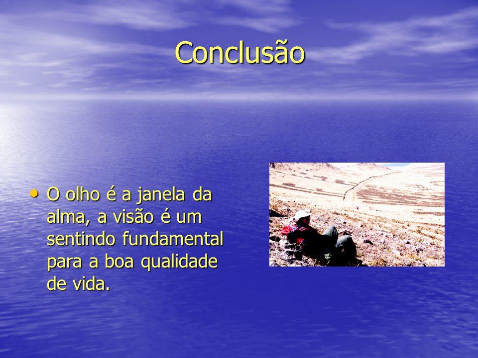 Conclusão Conclusão O olho é a janela da alma, a visão é um sentindo fundamental para a boa qualidade de vida. O olho é a janela da alma, a visão é um