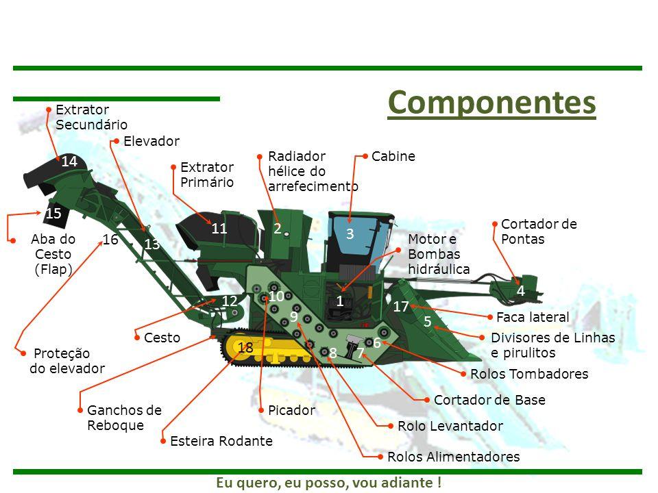 Extrator Secundário Elevador Extrator Primário Radiador hélice do arrefecimento Cabine Motor e Bombas hidráulica Cortador de Pontas Divisores de Linha