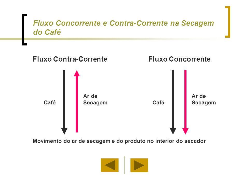 Fluxo Concorrente e Contra-Corrente na Secagem do Café Movimento do ar de secagem e do produto no interior do secador Café Ar de Secagem Fluxo Contra-Corrente Café Ar de Secagem Fluxo Concorrente