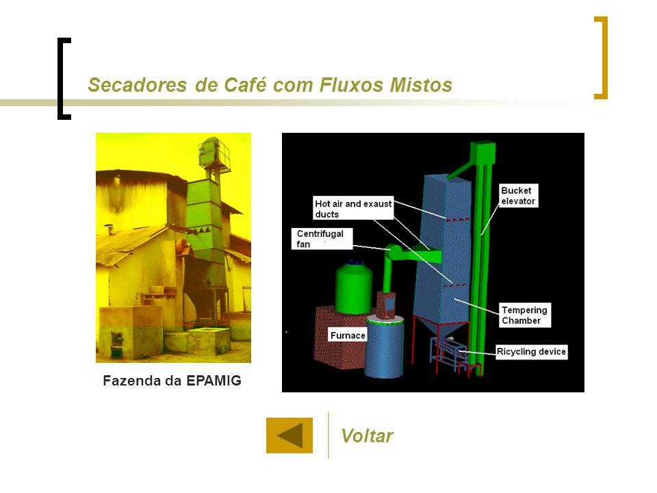 Fazenda da EPAMIG Voltar Secadores de Café com Fluxos Mistos