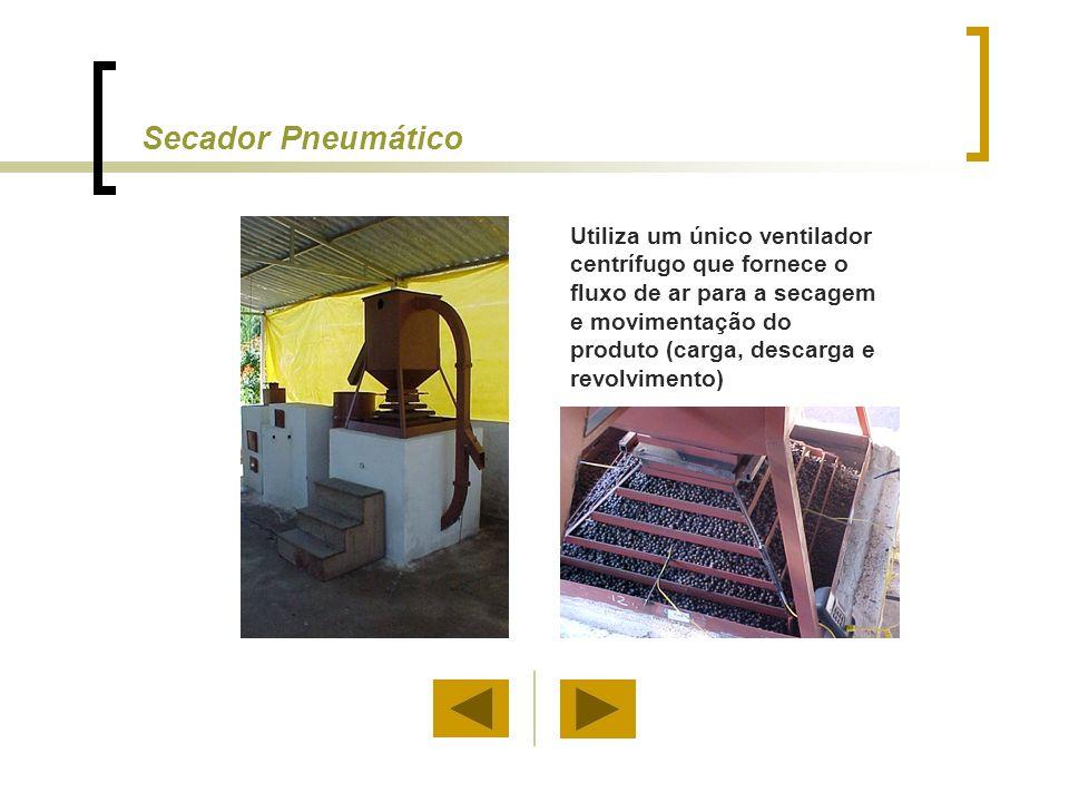 Utiliza um único ventilador centrífugo que fornece o fluxo de ar para a secagem e movimentação do produto (carga, descarga e revolvimento) Secador Pne