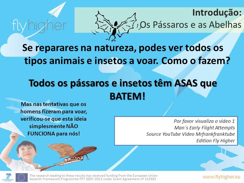 www.flyhigher.eu Introdução: Os Pássaros e as Abelhas Se reparares na natureza, podes ver todos os tipos animais e insetos a voar. Como o fazem? Todos