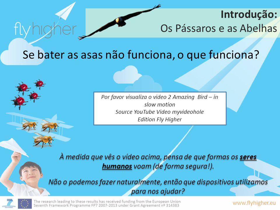 www.flyhigher.eu Introdução: Os Pássaros e as Abelhas Se bater as asas não funciona, o que funciona? À medida que vês o vídeo acima, pensa de que form
