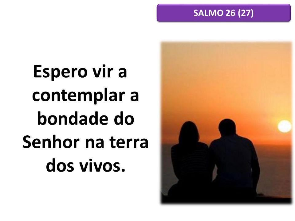 Espero vir a contemplar a bondade do Senhor na terra dos vivos. SALMO 26 (27)