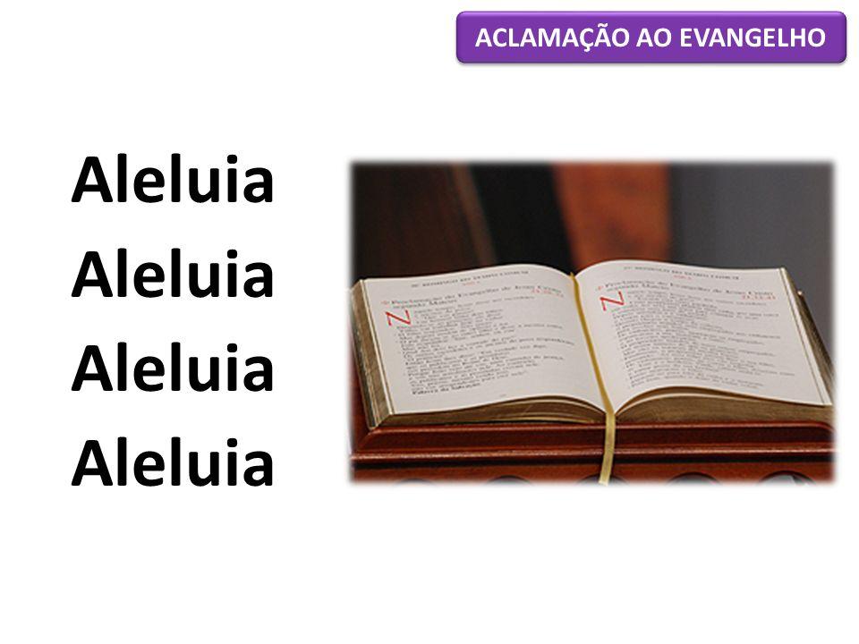 Aleluia ACLAMAÇÃO AO EVANGELHO