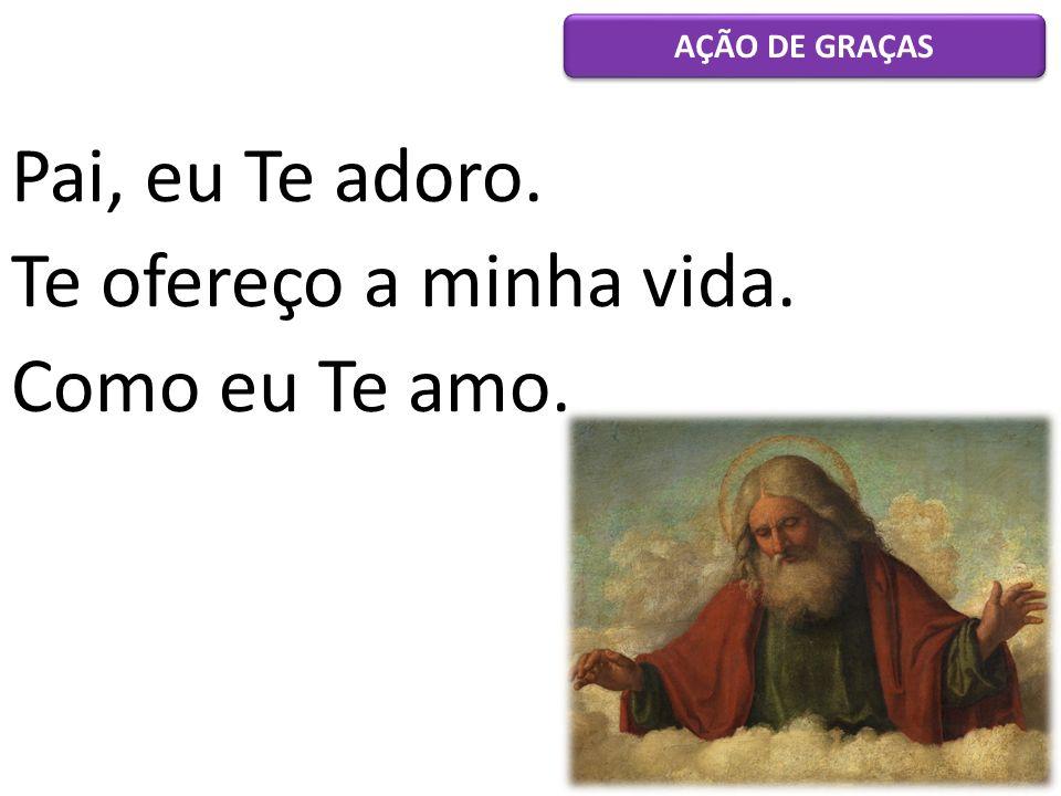 Pai, eu Te adoro. Te ofereço a minha vida. Como eu Te amo. AÇÃO DE GRAÇAS