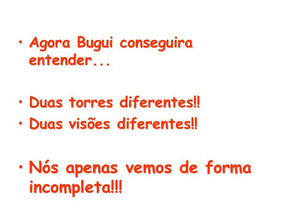 Agora Bugui conseguira entender...Agora Bugui conseguira entender... Duas torres diferentes!!Duas torres diferentes!! Duas visões diferentes!!Duas vis