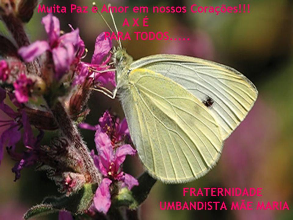 FRATERNIDADE UMBANDISTA MÃE MARIA Muita Paz e Amor em nossos Corações!!! A X É PARA TODOS.....
