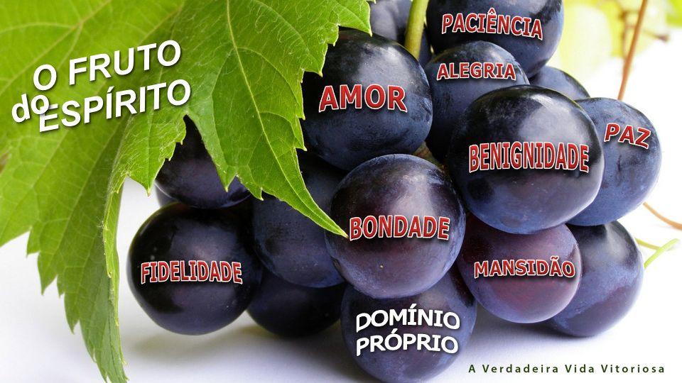 http://www.imotion.com.br/imagens/details.php?image_id=21561 O FRUTO ESPÍRITO ESPÍRITO dodo